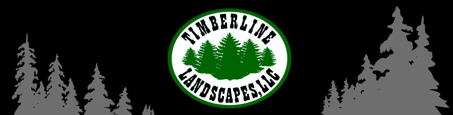 Timberline Landscapes