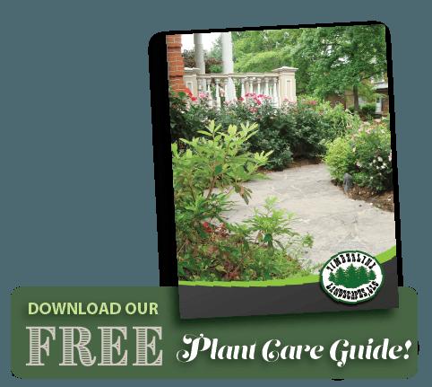 PlantCareGuide-Timberline Landscapes